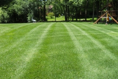 lawncare9